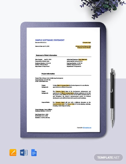 Free Simple Software Statement Template