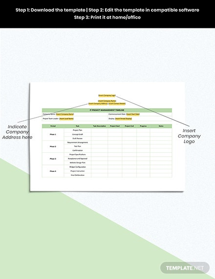 IT Project Management Timeline Format