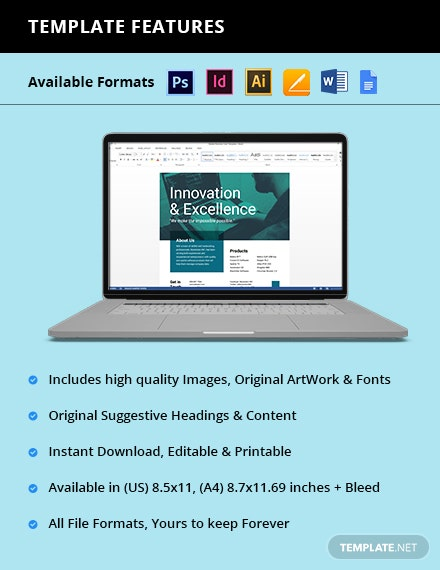 Software Product Flyer Format