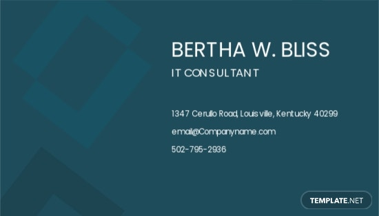 IT Consultant Business Card Template 1.jpe