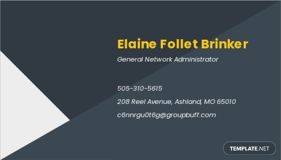 Network Administration Business Card Template 1.jpe
