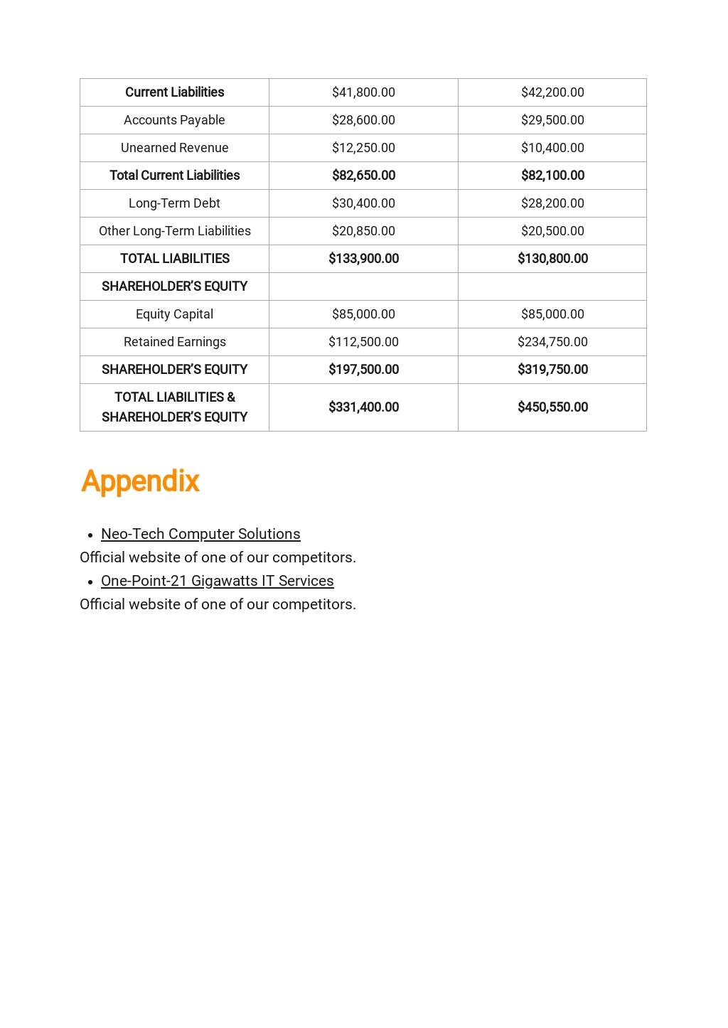Free Basic IT Business Plan Template 8.jpe