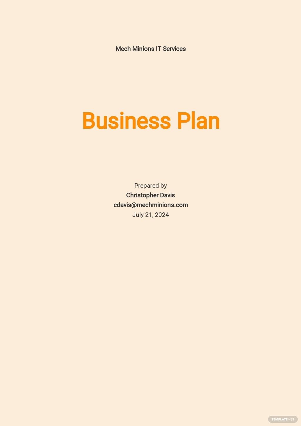 Basic IT Business Plan Template