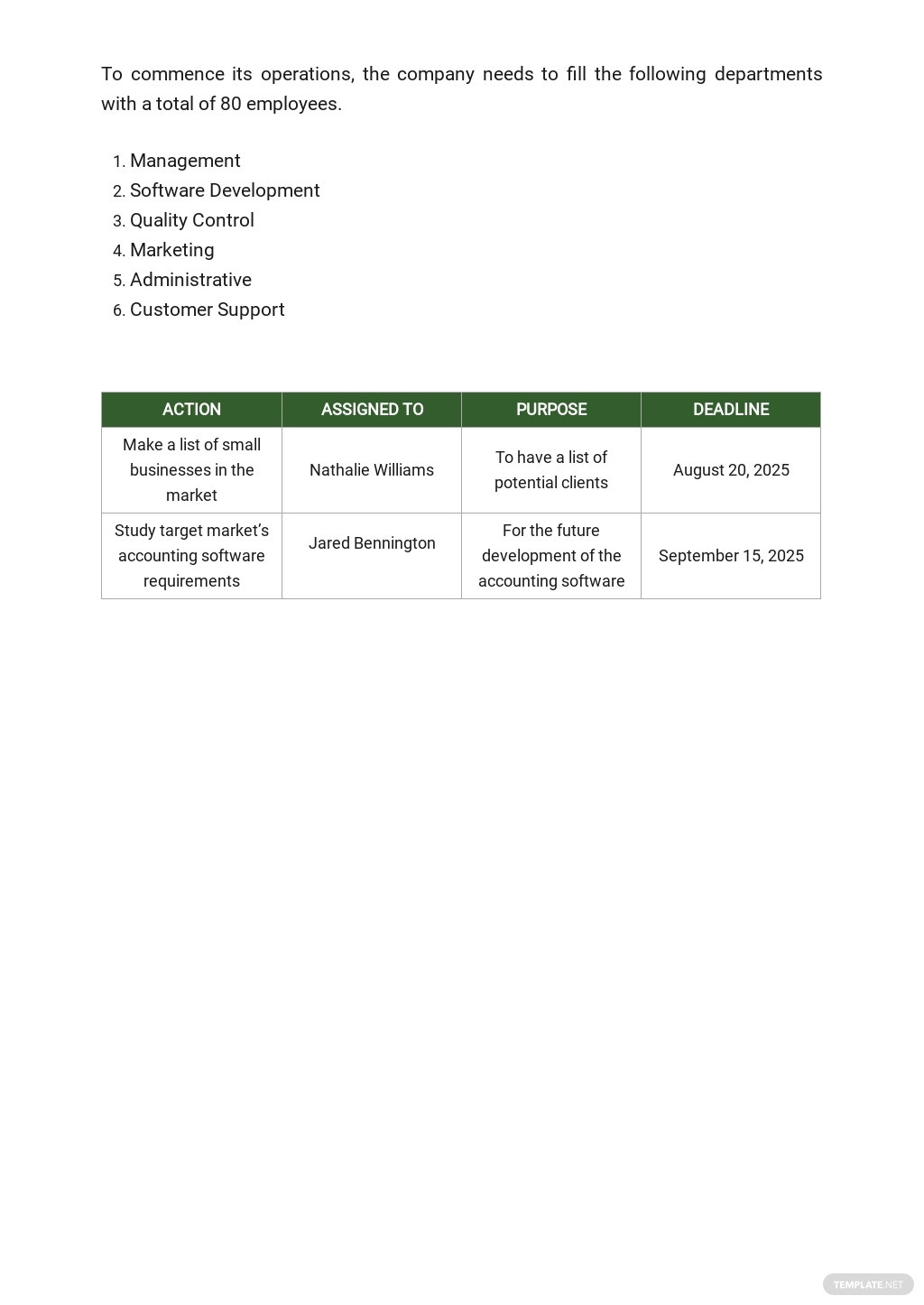 Free Sample Software Business Plan Template 5.jpe