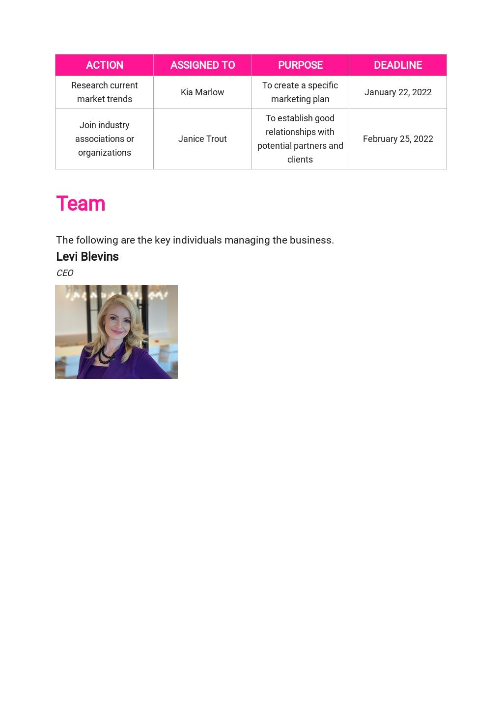 Website Design and Development Business Plan Template 5.jpe