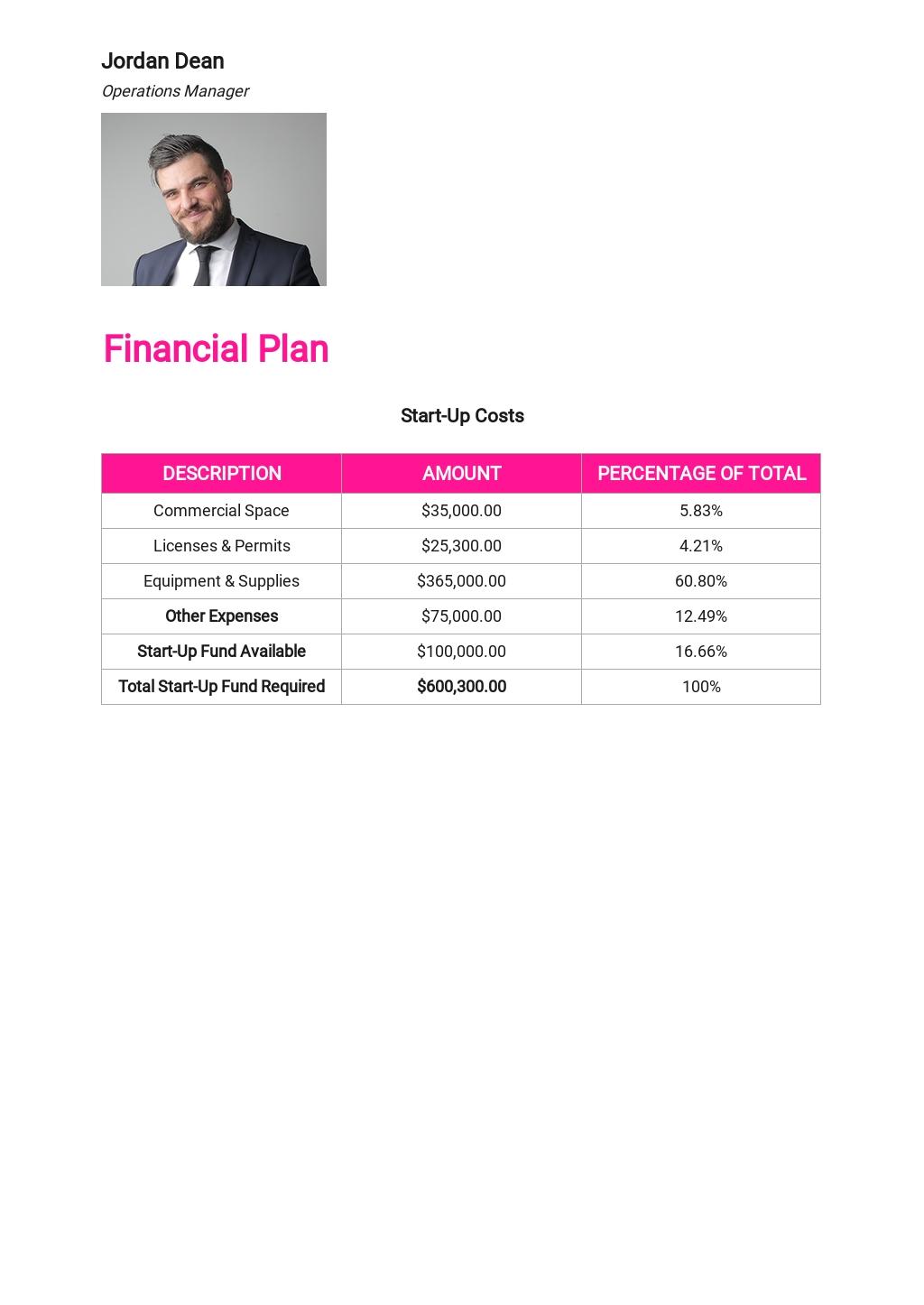 Website Design and Development Business Plan Template 6.jpe