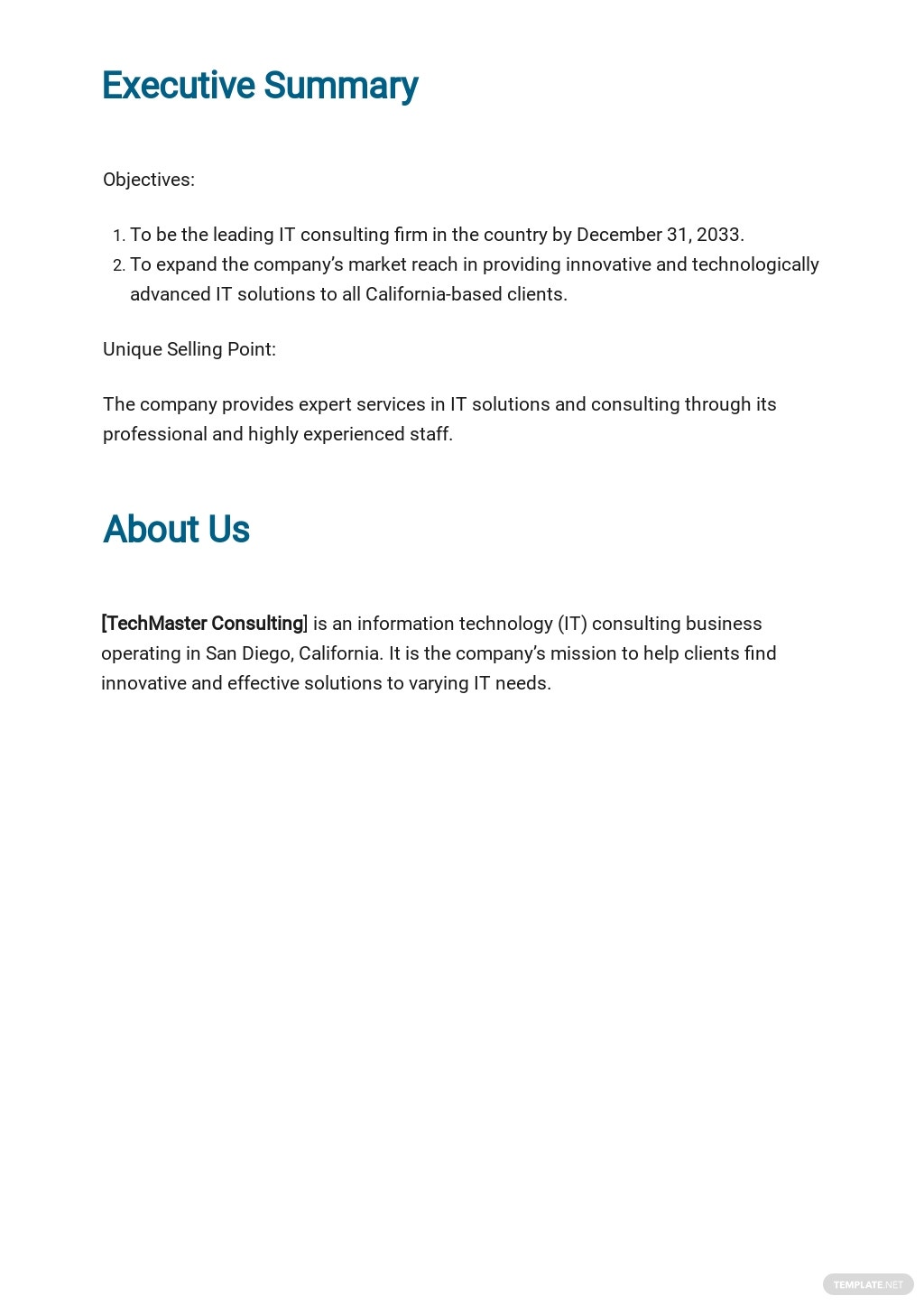 IT Consulting Business Plan Template 1.jpe