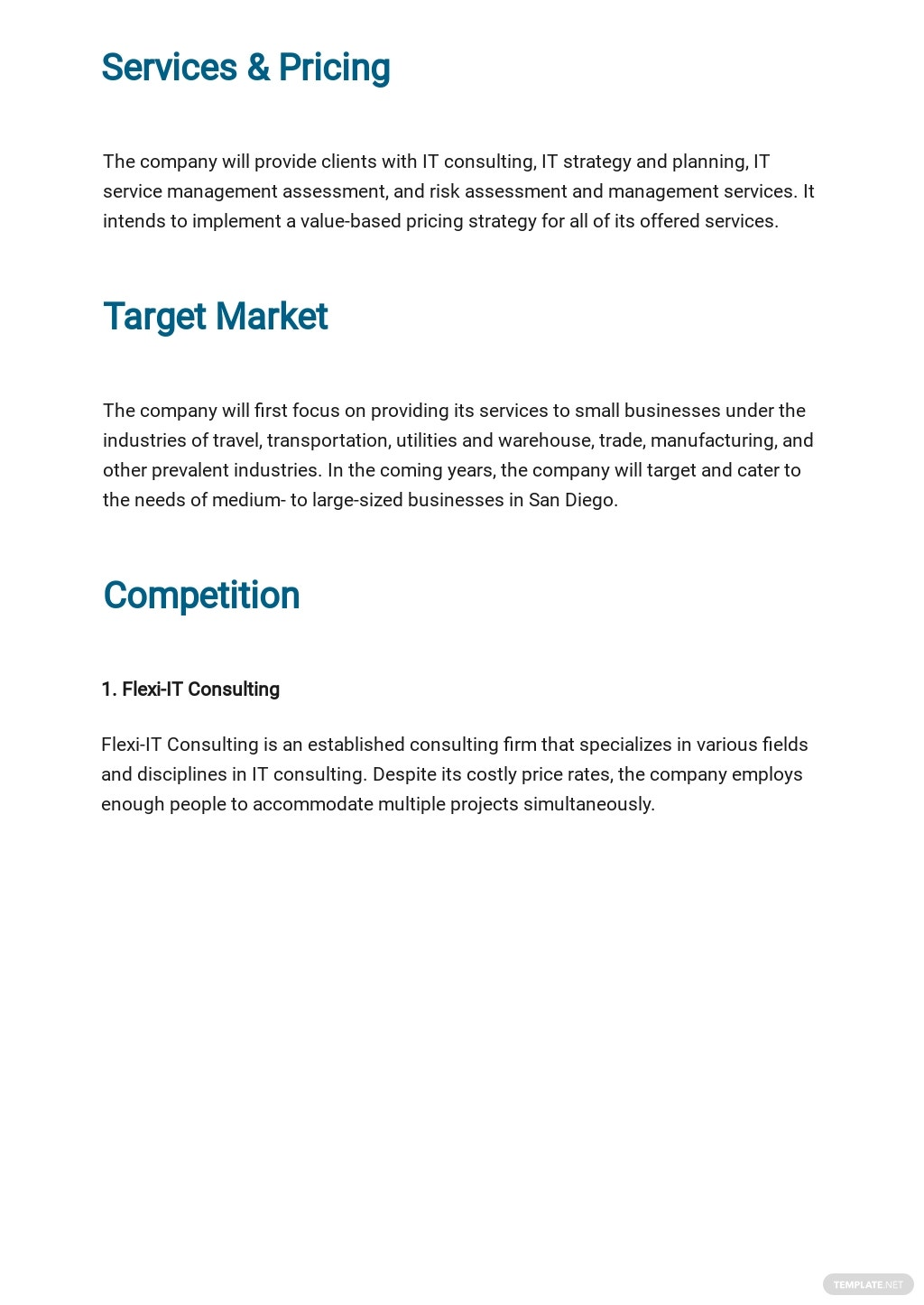 IT Consulting Business Plan Template 2.jpe