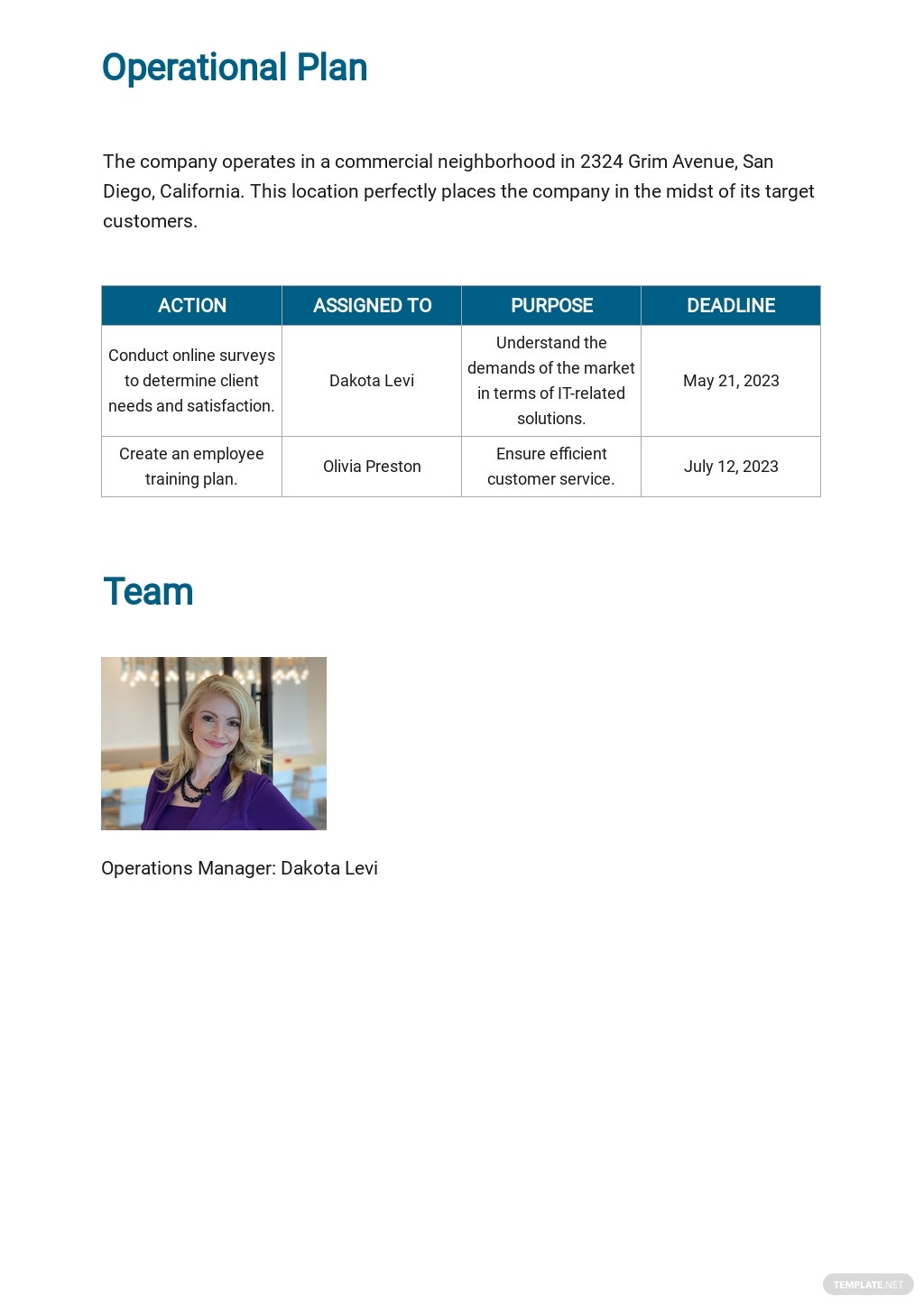 IT Consulting Business Plan Template 5.jpe