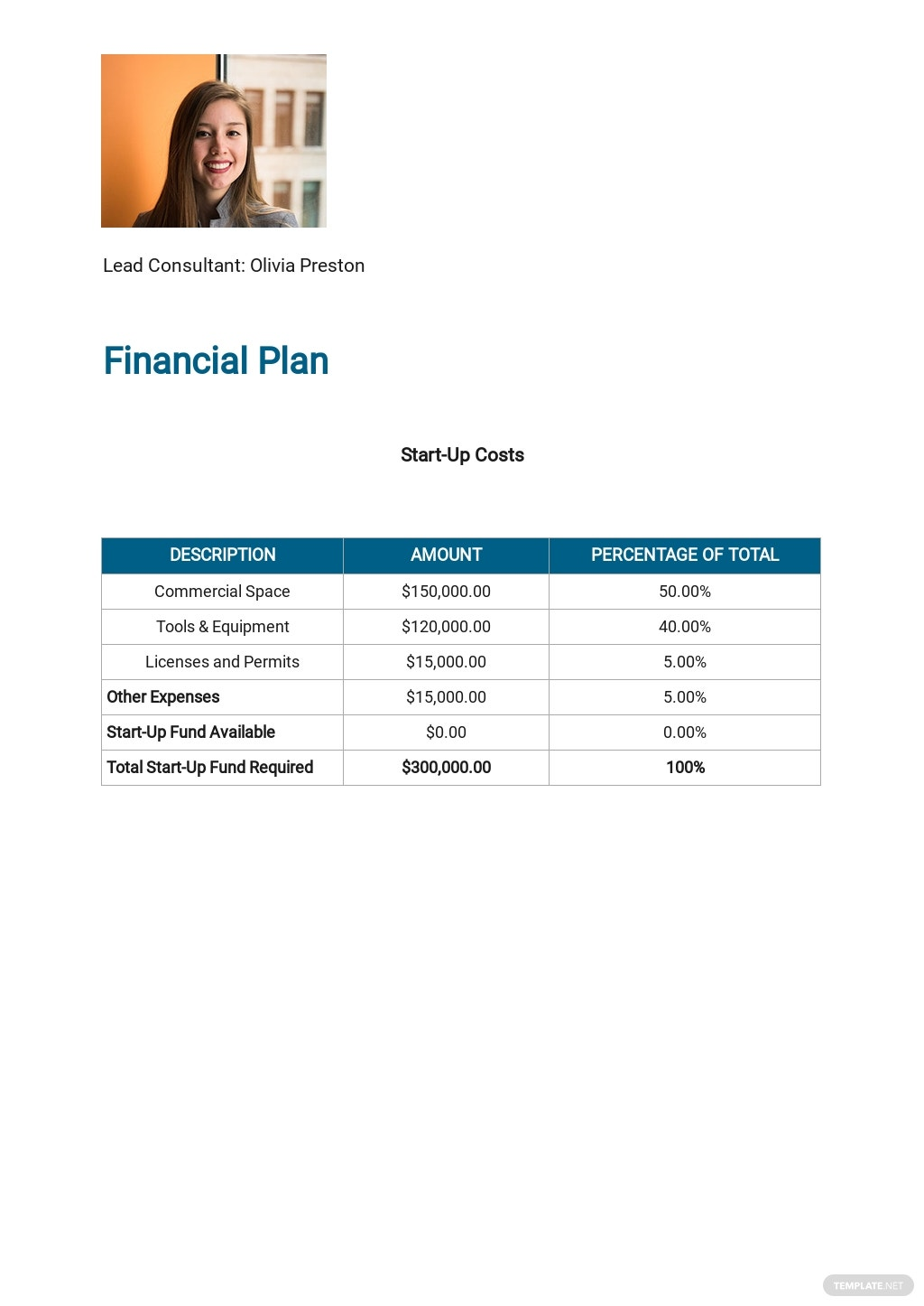 IT Consulting Business Plan Template 6.jpe