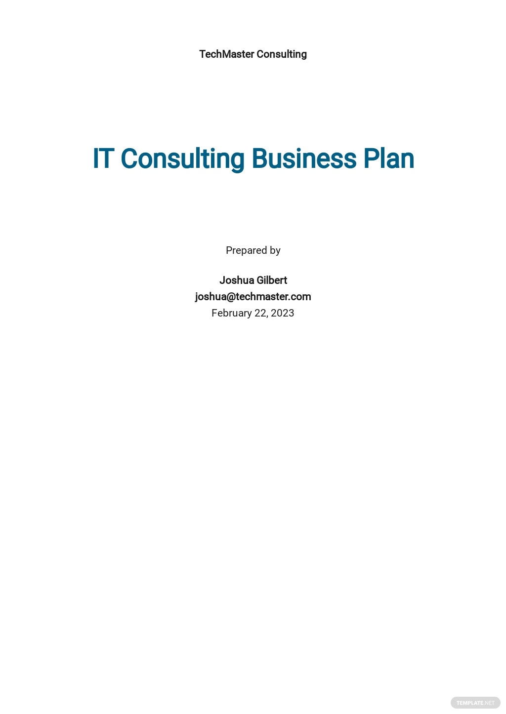 IT Consulting Business Plan Template