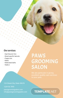 Pet Grooming Poster Template