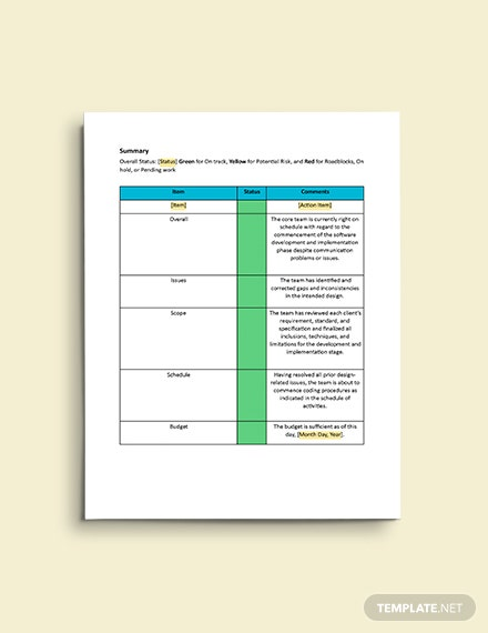 Software Daily Status Report Template