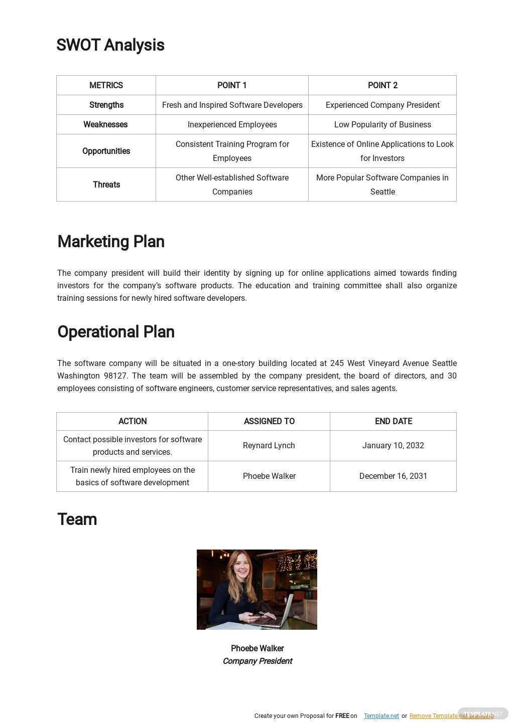 Software Company Business Plan Template 2.jpe