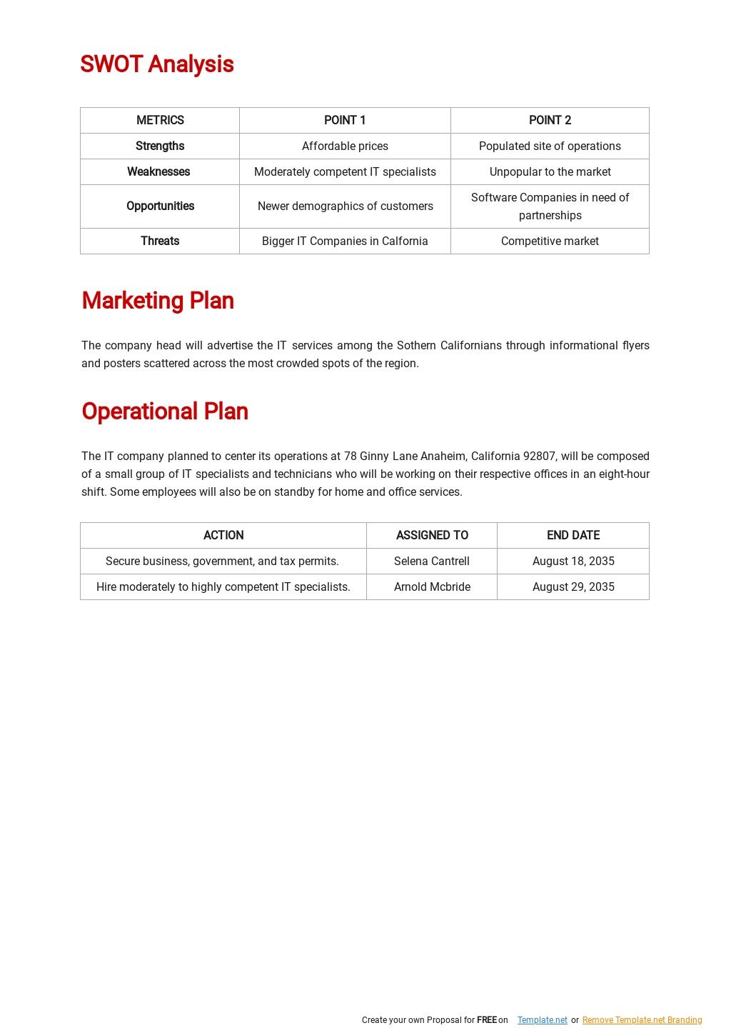 IT Startup Business Plan Template 2.jpe