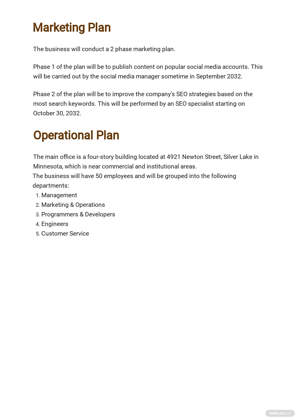 Computer Software Business Plan Template 4.jpe