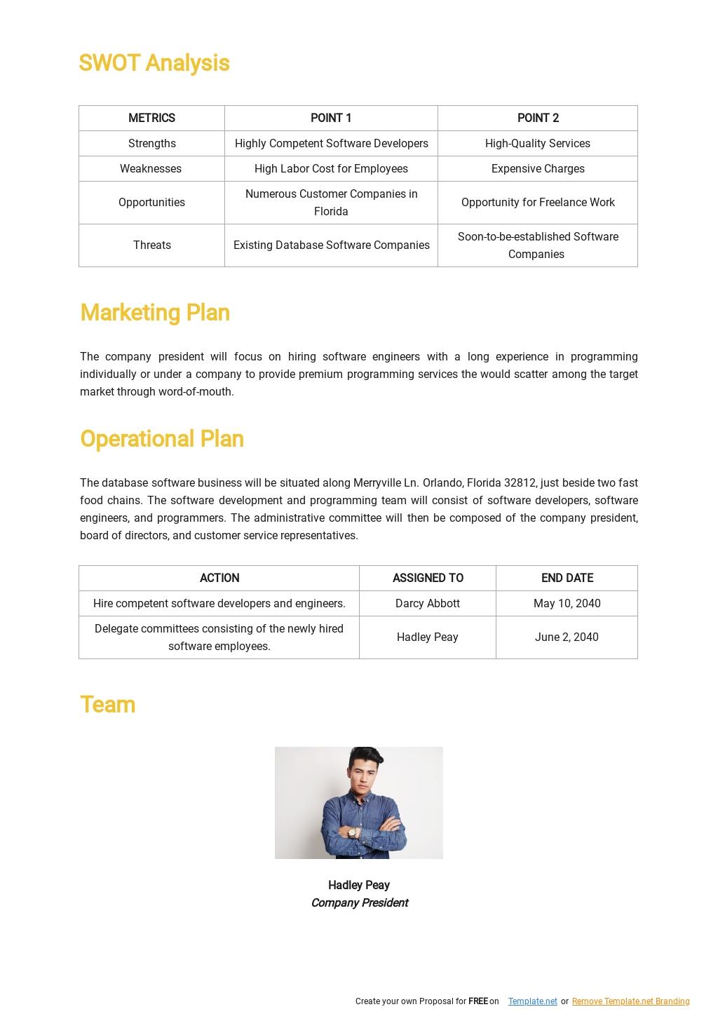 Database Software Business Plan Template 2.jpe