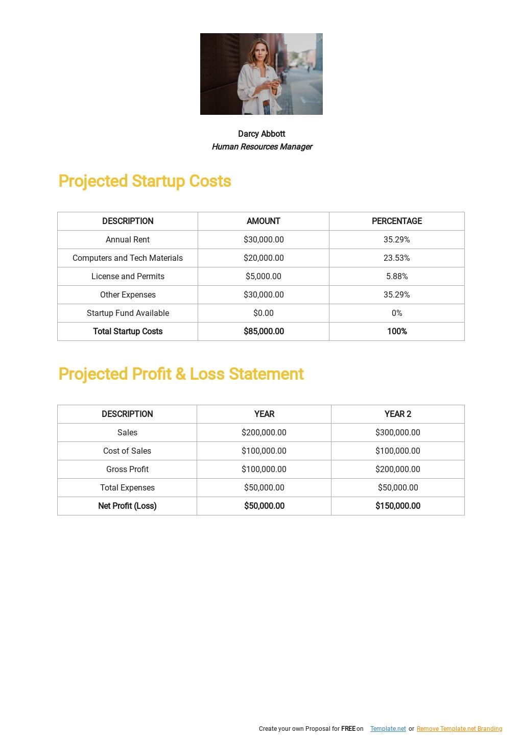Database Software Business Plan Template 3.jpe