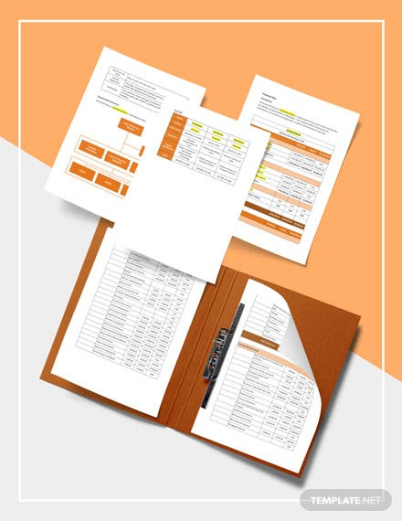 Software Testing Business Plan Template example