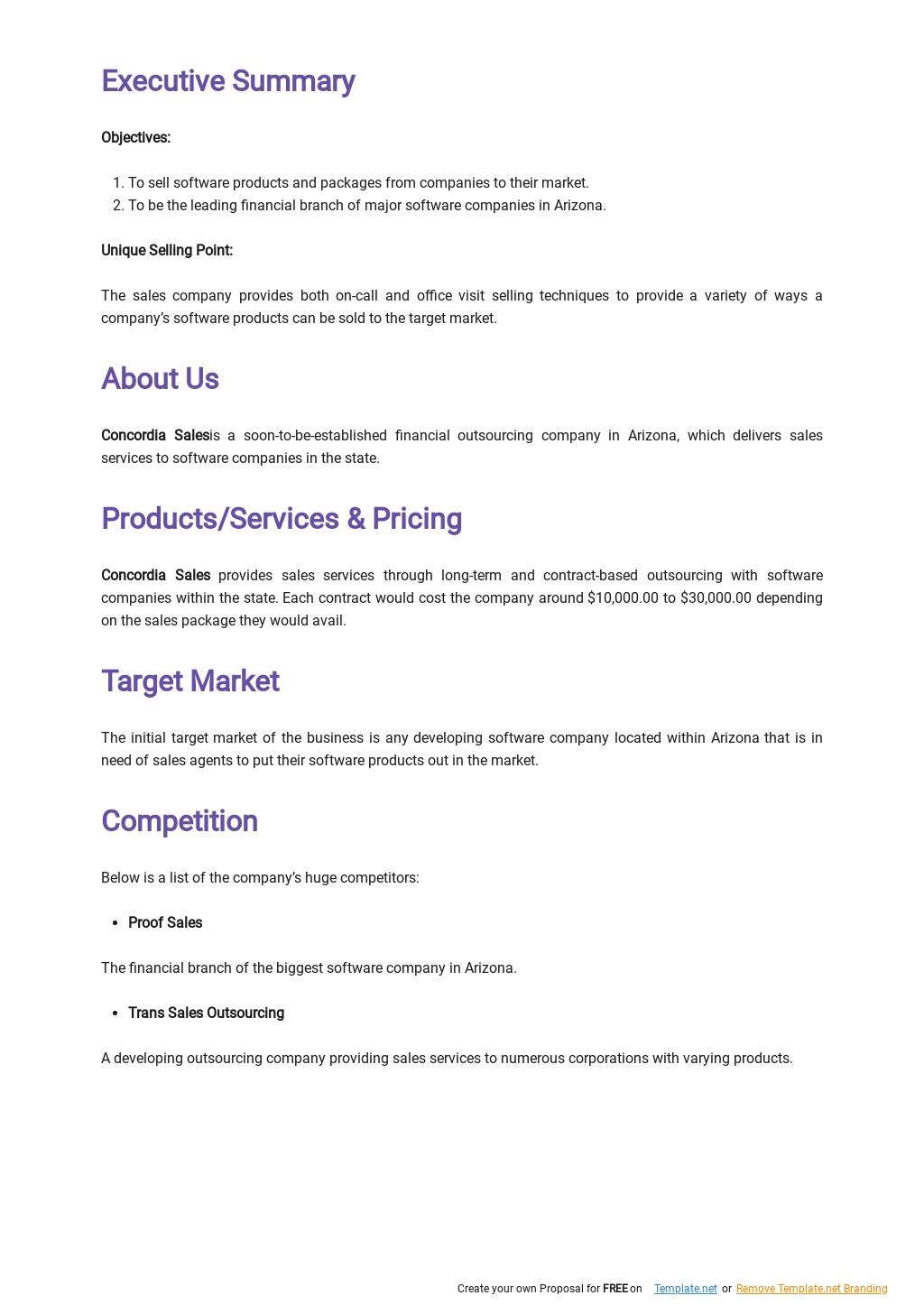 Software Sales Business Plan Template 1.jpe