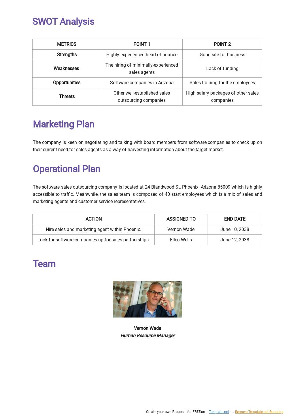 Software Sales Business Plan Template 2.jpe