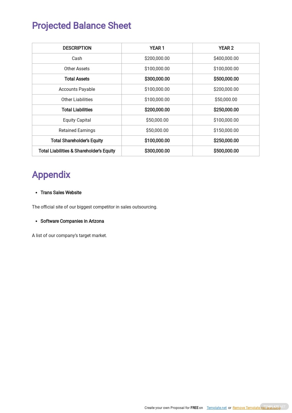 Software Sales Business Plan Template 4.jpe