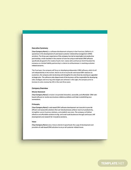 Software Sales Business Plan Template
