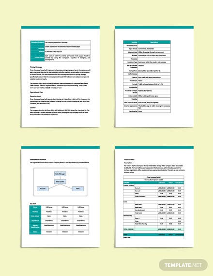 Software Sales Business Plan download