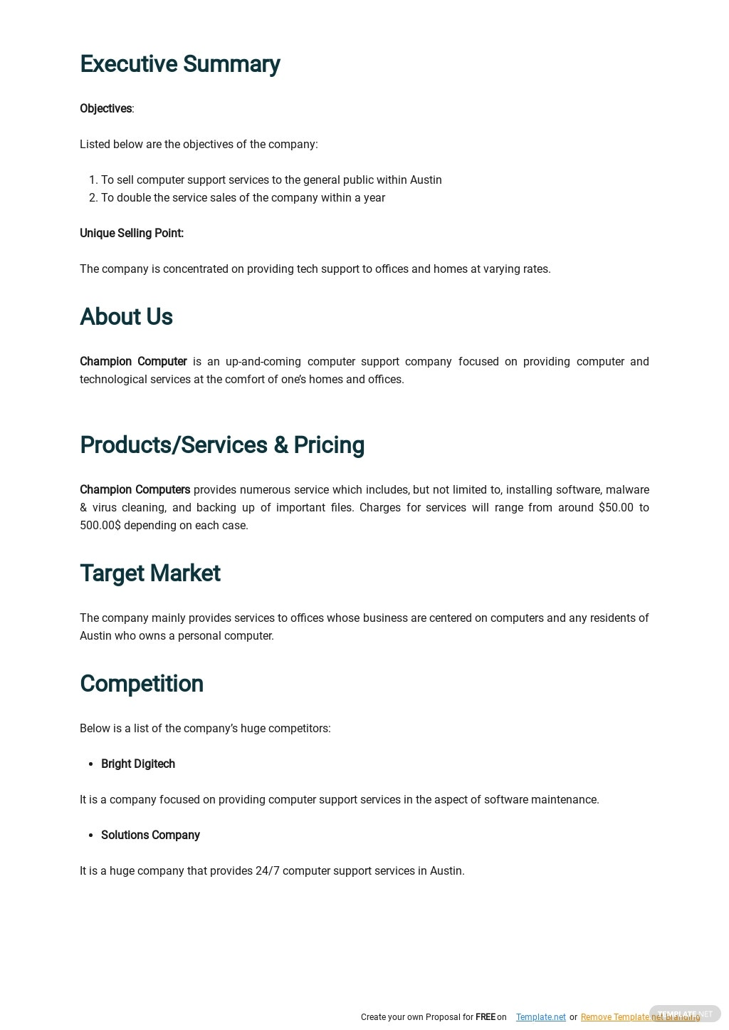 Computer Support Business Plan Template 1.jpe