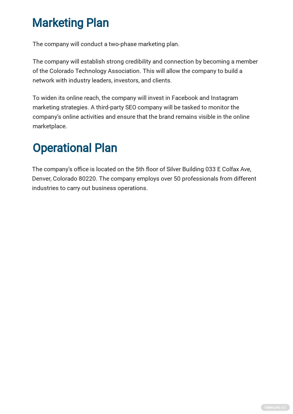 IT Support Business Plan Template 4.jpe