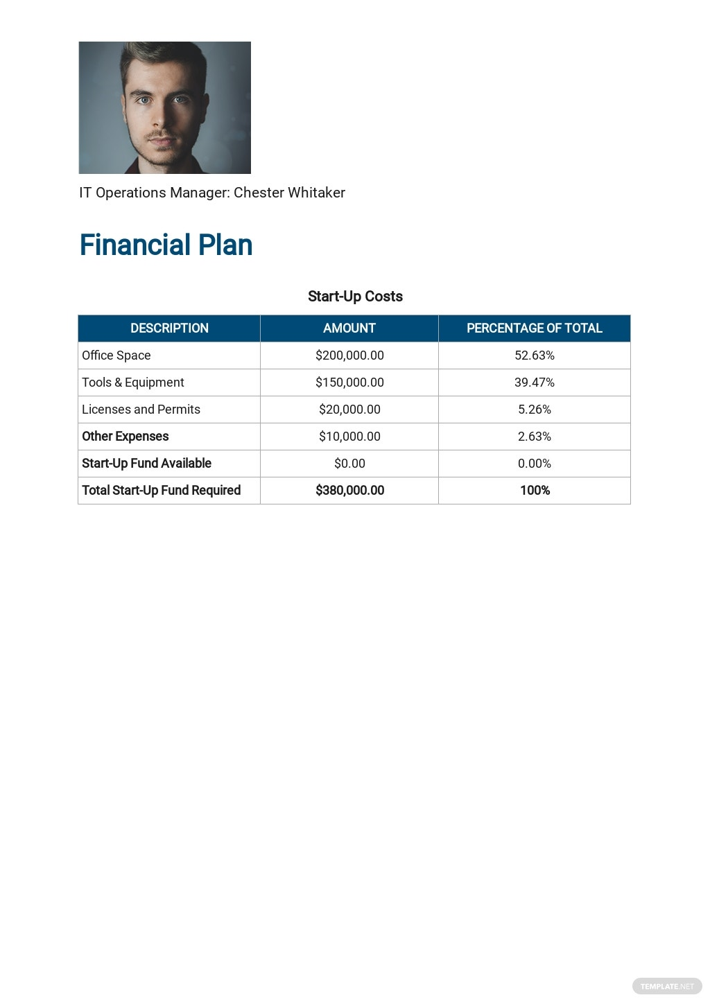 IT Support Business Plan Template 6.jpe