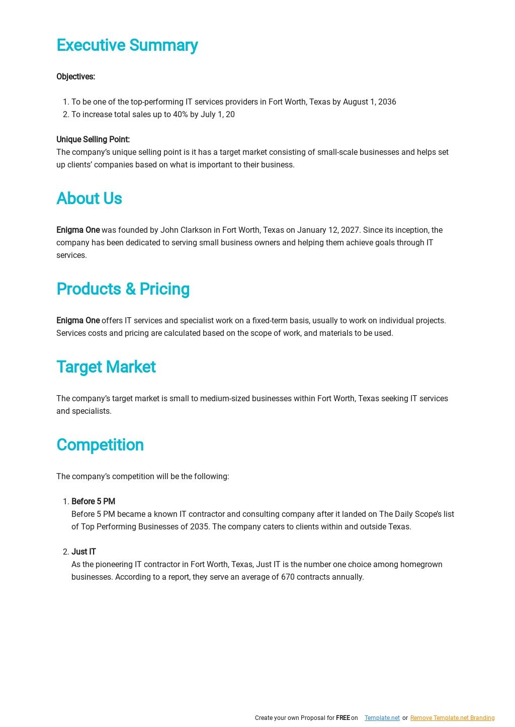 IT Contractor Business Plan Template 1.jpe