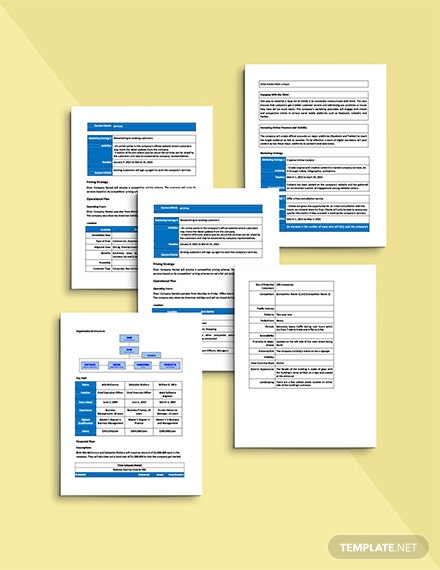 IT Contractor Business Plan Template Sample