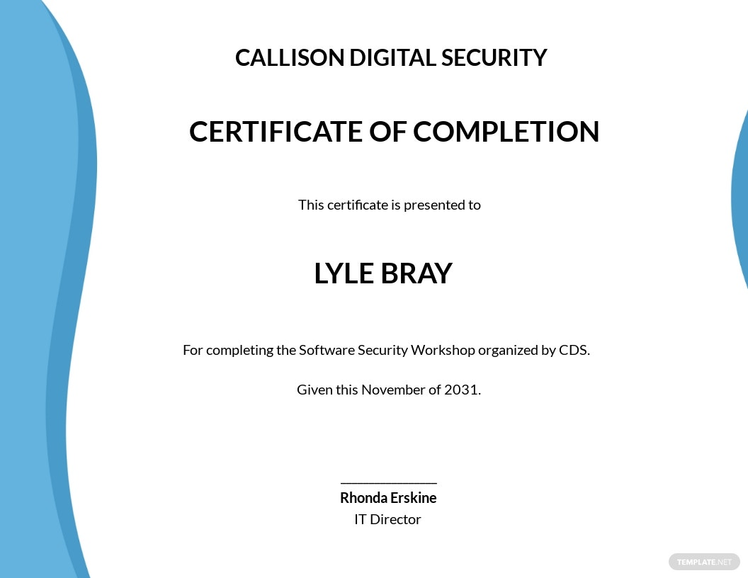 Software Security Certificate Template