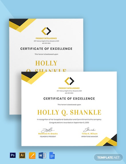 Software Excellence Certificate Template