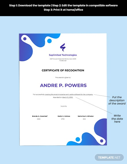 Software Award Certificate Editable