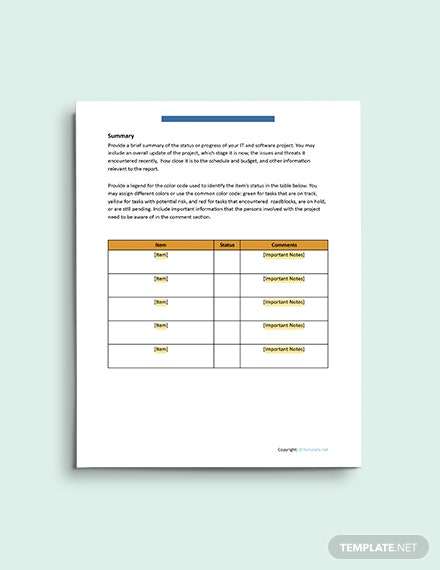 Basic IT and Software Report Template