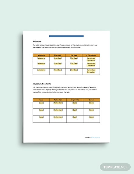 Basic IT and Software Report format
