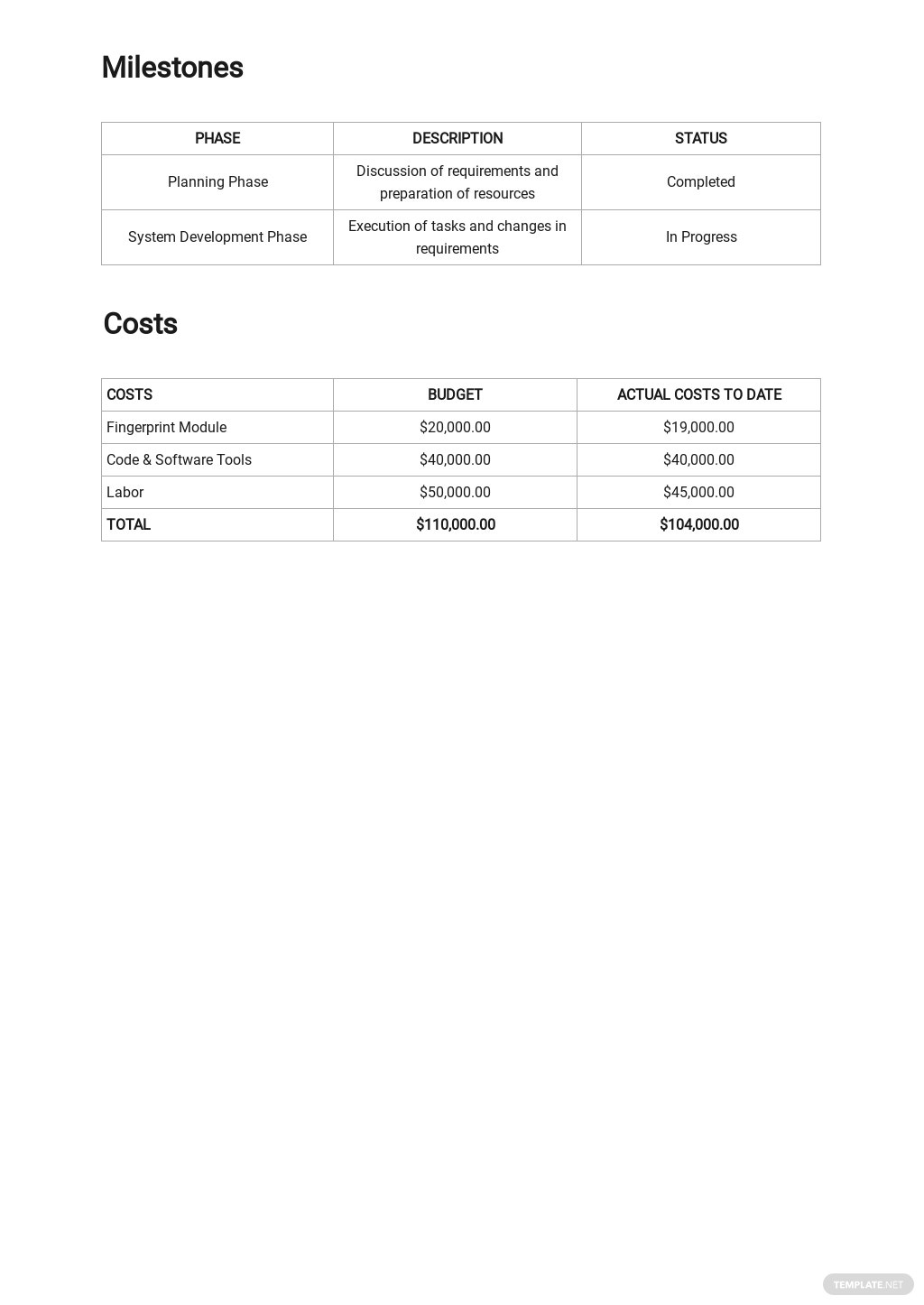 Free Basic IT and Software Report Template 2.jpe