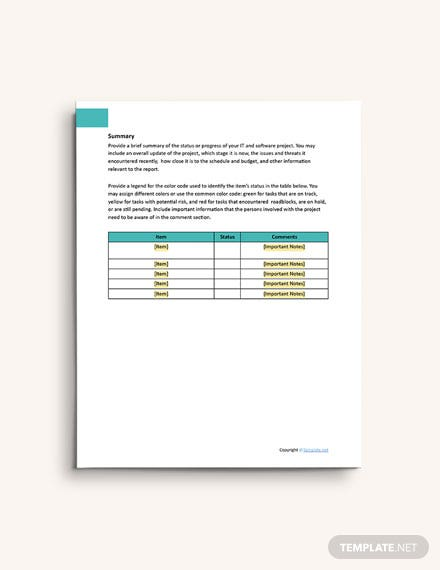 Sample IT and Software Report Template