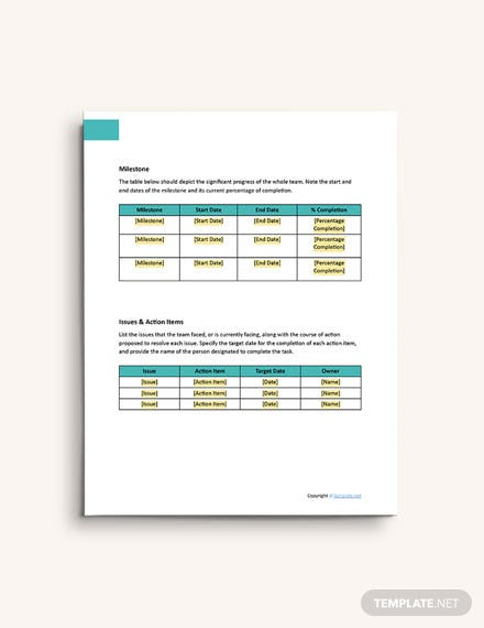 Sample IT and Software Report format