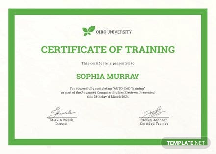 Free Computer Training Certificate Template Free Templates