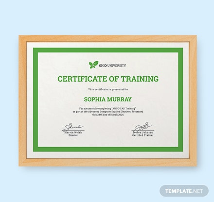 Free computer training certificate template in psd ms word free computer training certificate template yelopaper Choice Image
