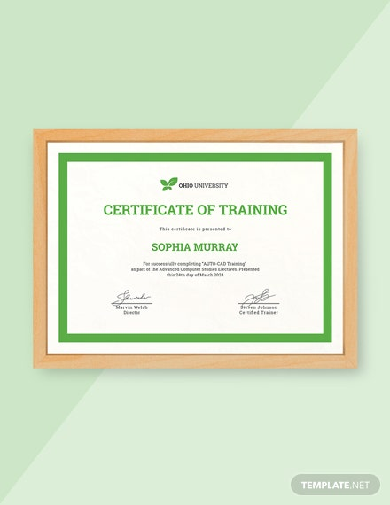 15 Free Training Certificate Templates Download Ready Made