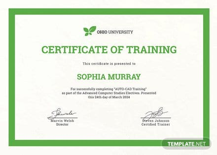 Free Computer Training Certificate Template in PSD, MS ...