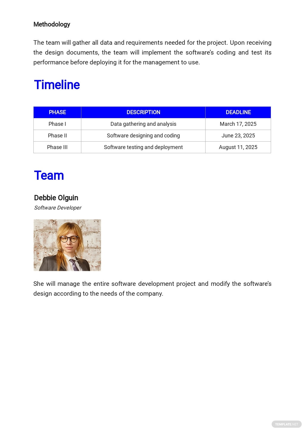 Free Simple IT & Software Plan Template 2.jpe