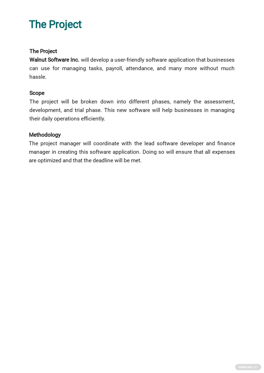 Software Project Plan Template 1.jpe