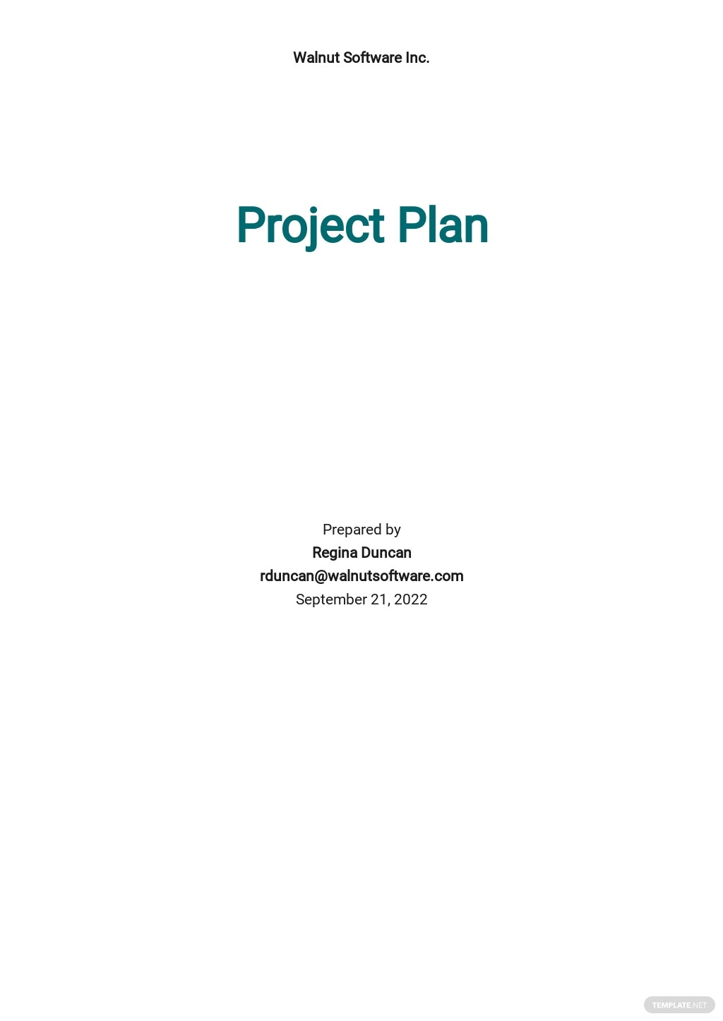 Software Project Plan Template.jpe
