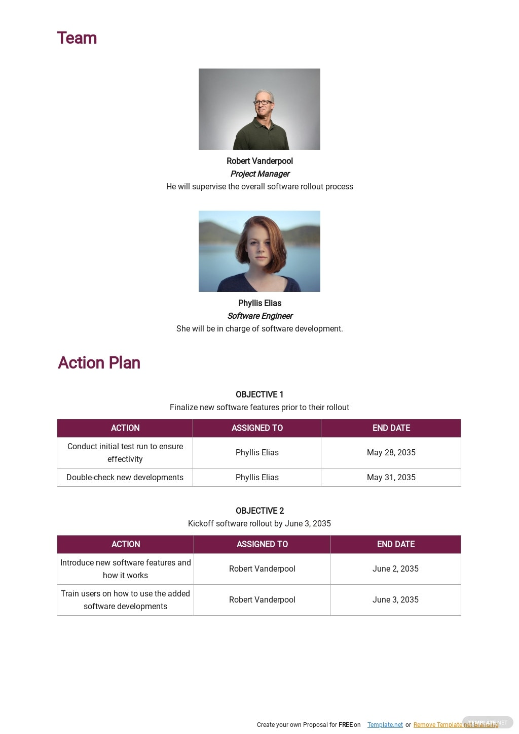 Software Rollout Plan Template 2.jpe