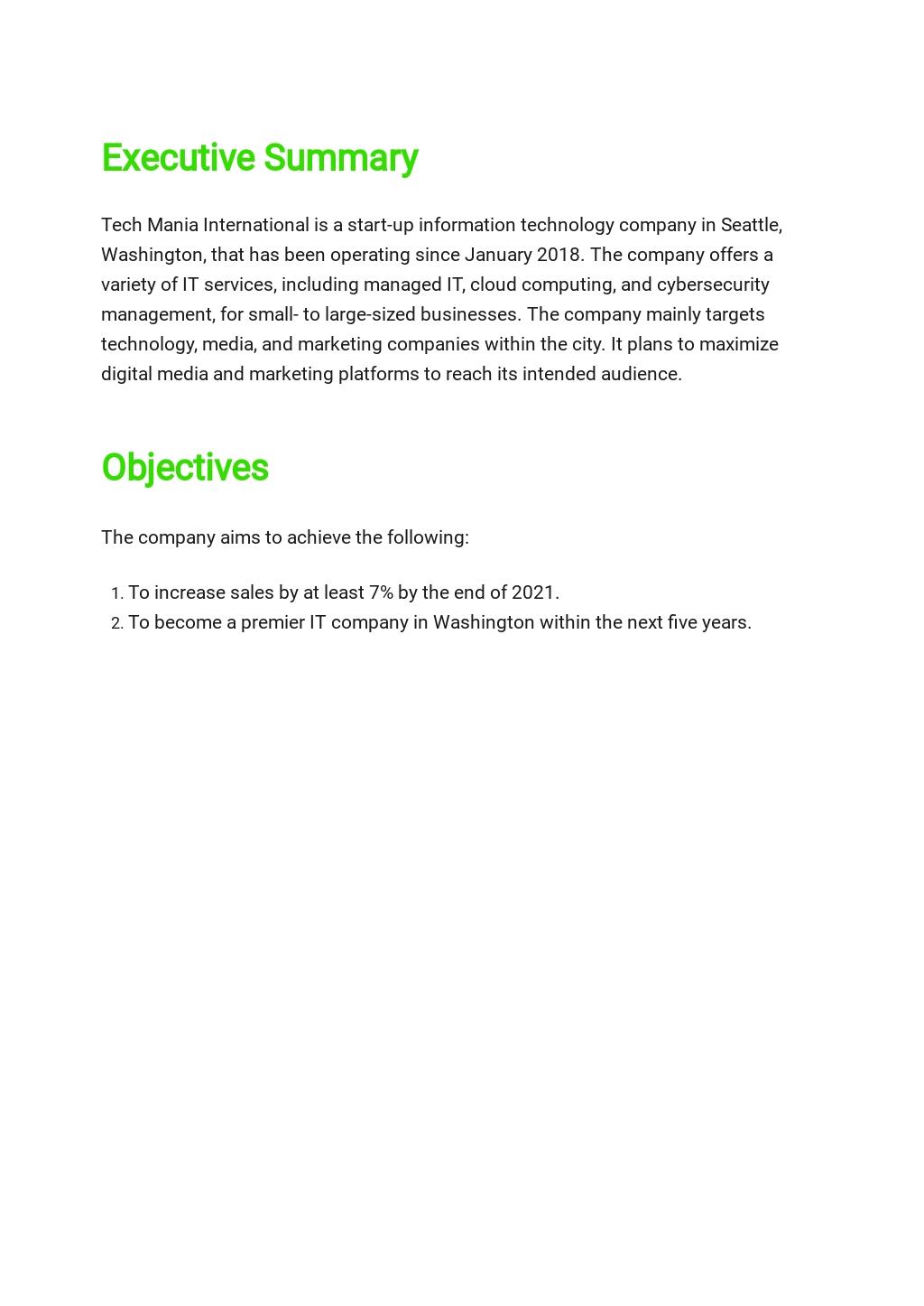 IT Business Marketing Plan Template 1.jpe